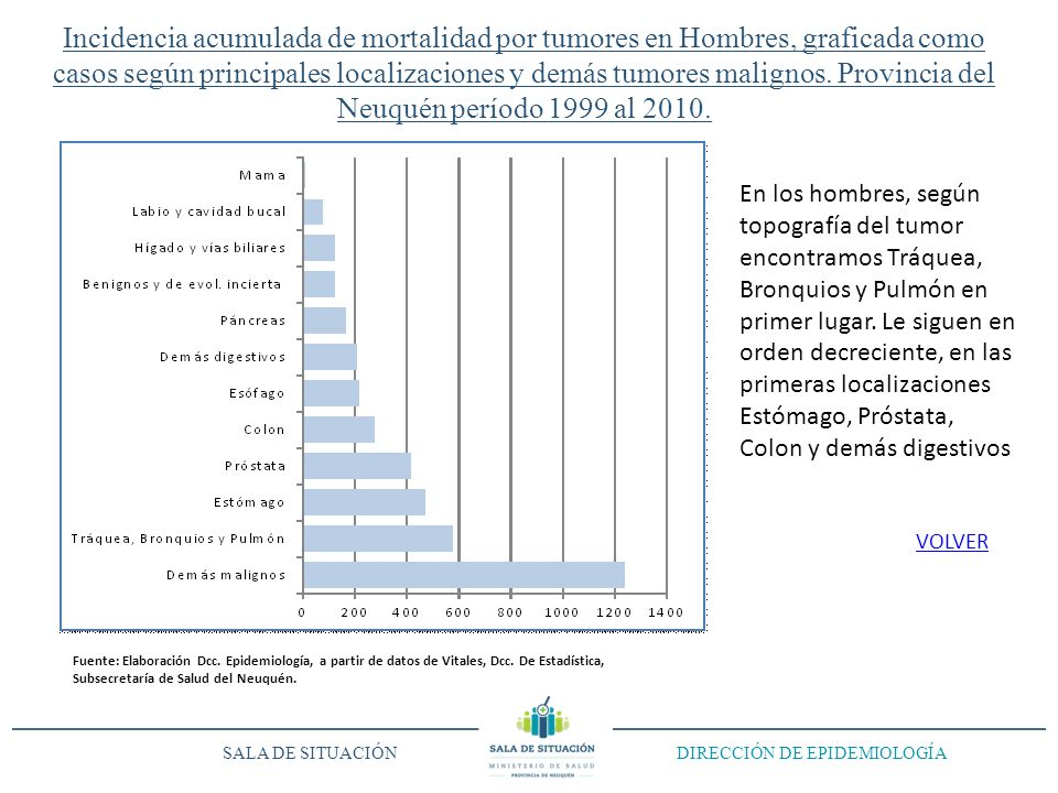 Incidencia acumulada de mortalidad por tumores en Hombres, graficada como casos según principales localizaciones y demás tumores malignos. Provincia d