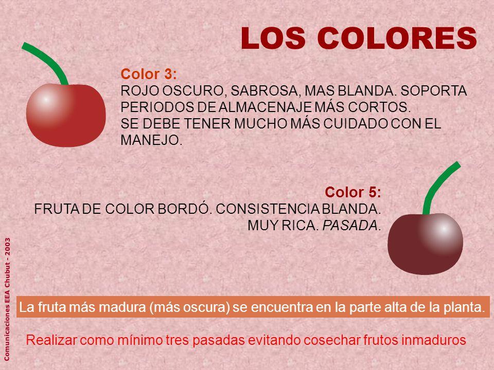 Color 3: ROJO OSCURO, SABROSA, MAS BLANDA. SOPORTA PERIODOS DE ALMACENAJE MÁS CORTOS. SE DEBE TENER MUCHO MÁS CUIDADO CON EL MANEJO. LOS COLORES Reali