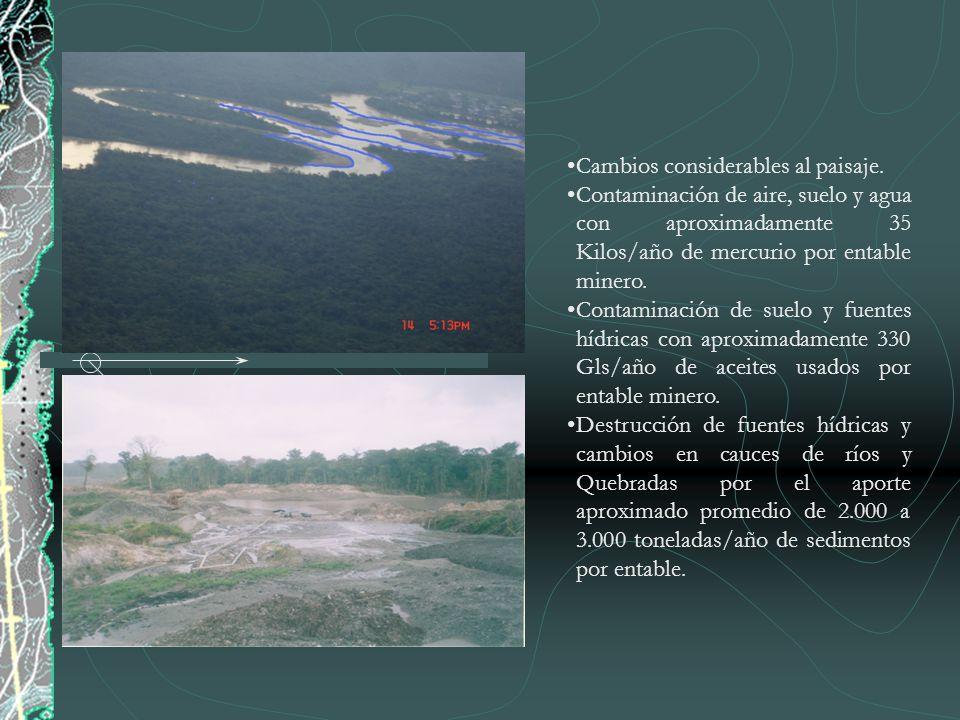 Cambios considerables al paisaje. Contaminación de aire, suelo y agua con aproximadamente 35 Kilos/año de mercurio por entable minero. Contaminación d