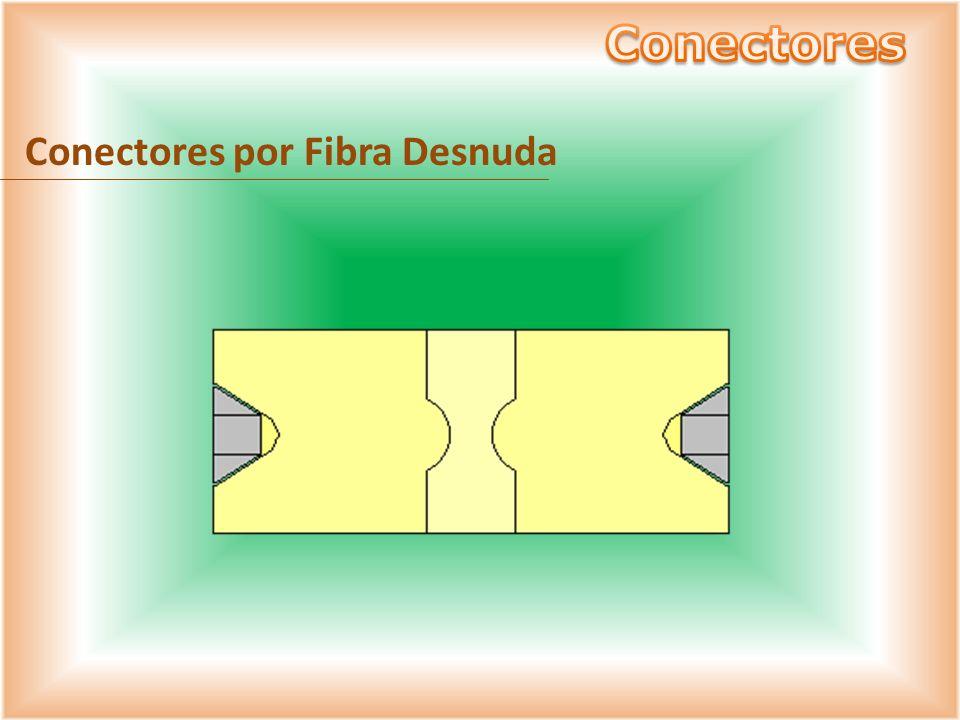 Conectores por Fibra Desnuda