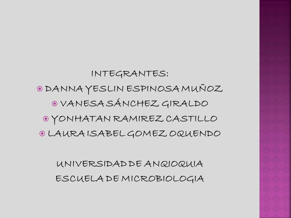 INTEGRANTES: DANNA YESLIN ESPINOSA MUÑOZ VANESA SÁNCHEZ GIRALDO YONHATAN RAMIREZ CASTILLO LAURA ISABEL GOMEZ OQUENDO UNIVERSIDAD DE ANQIOQUIA ESCUELA DE MICROBIOLOGIA