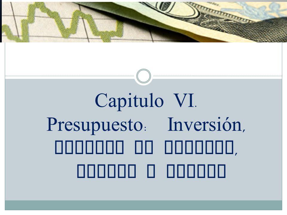 Capitulo VI. Presupuesto : Inversión, Capital de Trabajo, Costos y Gastos