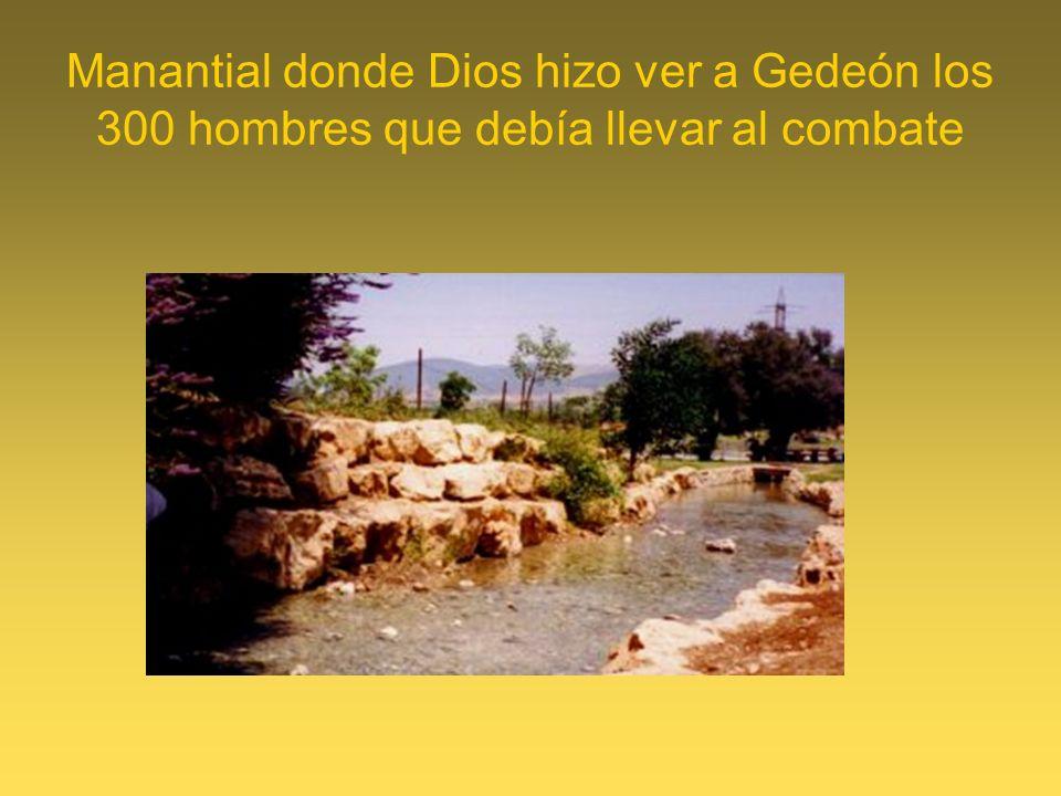 Manantial donde Dios hizo ver a Gedeón los 300 hombres que debía llevar al combate