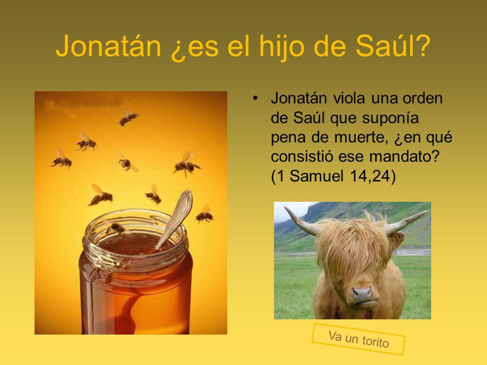 Jonatán ¿es el hijo de Saúl? Jonatán viola una orden de Saúl que suponía pena de muerte, ¿en qué consistió ese mandato? (1 Samuel 14,24) Va un torito