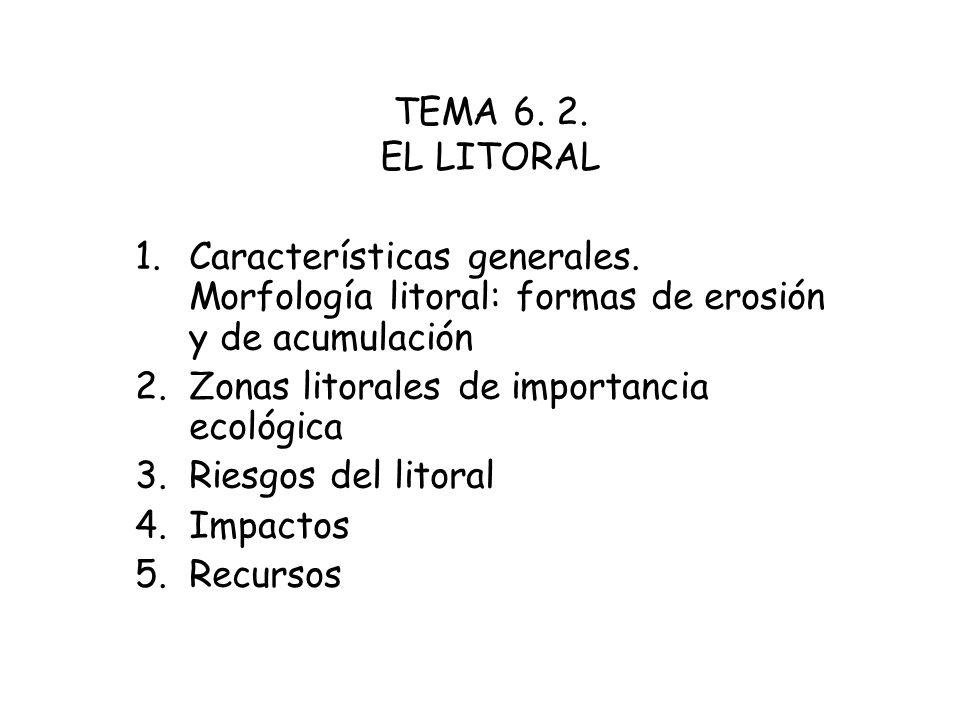 TEMA 6. 2. EL LITORAL 1.Características generales. Morfología litoral: formas de erosión y de acumulación 2.Zonas litorales de importancia ecológica 3