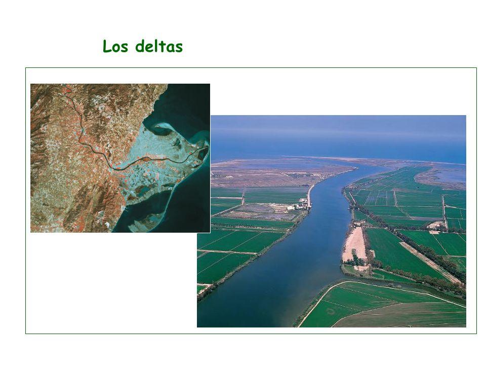 Los deltas