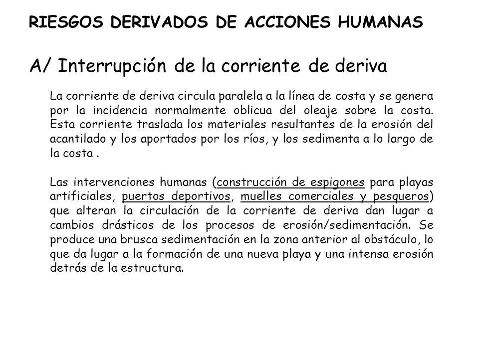 RIESGOS DERIVADOS DE ACCIONES HUMANAS A/ Interrupción de la corriente de deriva La corriente de deriva circula paralela a la línea de costa y se gener