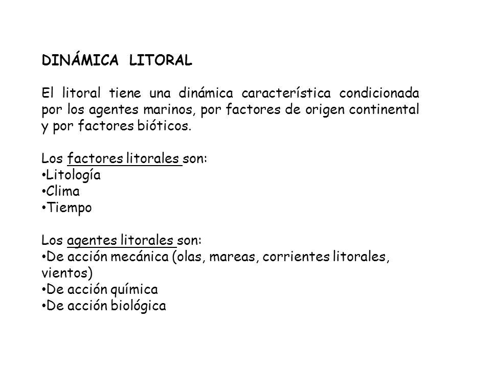 DINÁMICA LITORAL El litoral tiene una dinámica característica condicionada por los agentes marinos, por factores de origen continental y por factores