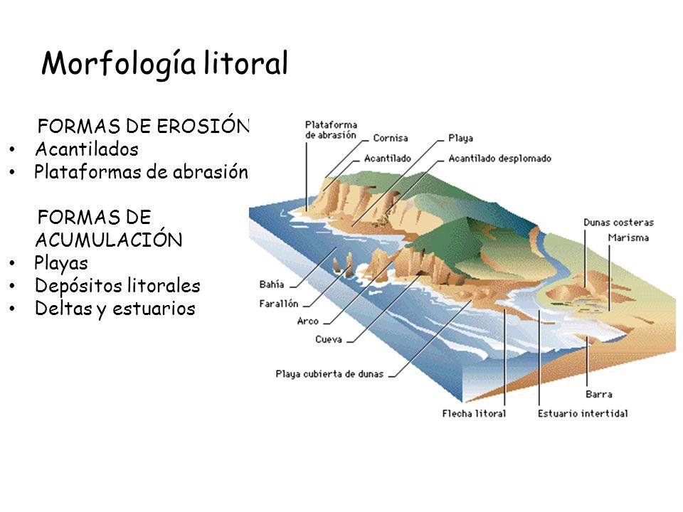 Morfología litoral FORMAS DE EROSIÓN Acantilados Plataformas de abrasión FORMAS DE ACUMULACIÓN Playas Depósitos litorales Deltas y estuarios