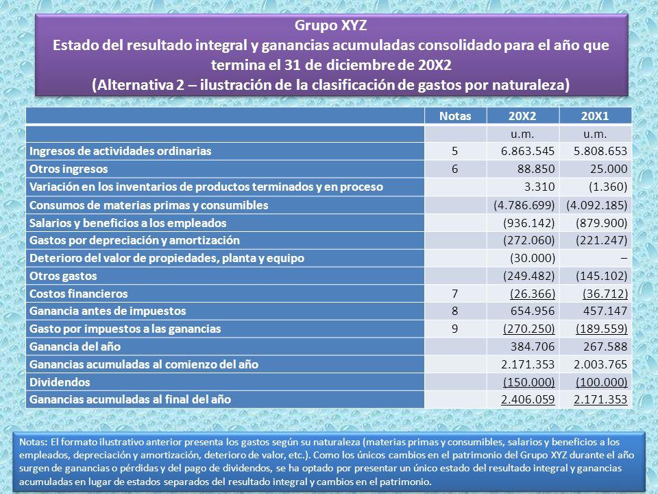 Grupo XYZ Estado del resultado integral y ganancias acumuladas consolidado para el año que termina el 31 de diciembre de 20X2 (Alternativa 2 – ilustra