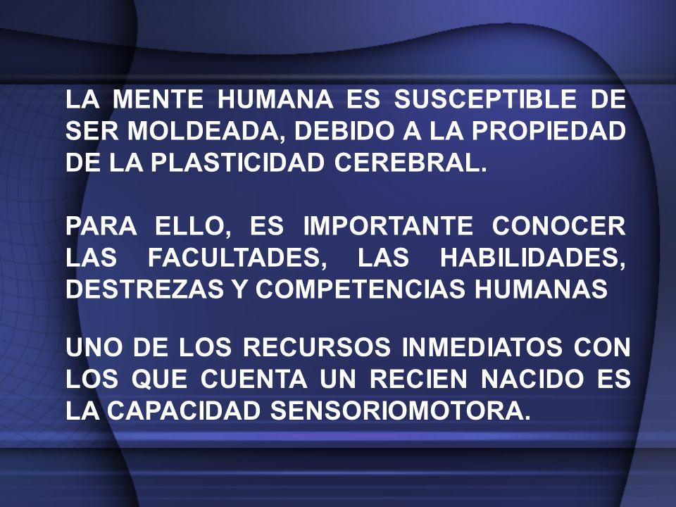 LA MENTE HUMANA ES SUSCEPTIBLE DE SER MOLDEADA, DEBIDO A LA PROPIEDAD DE LA PLASTICIDAD CEREBRAL.