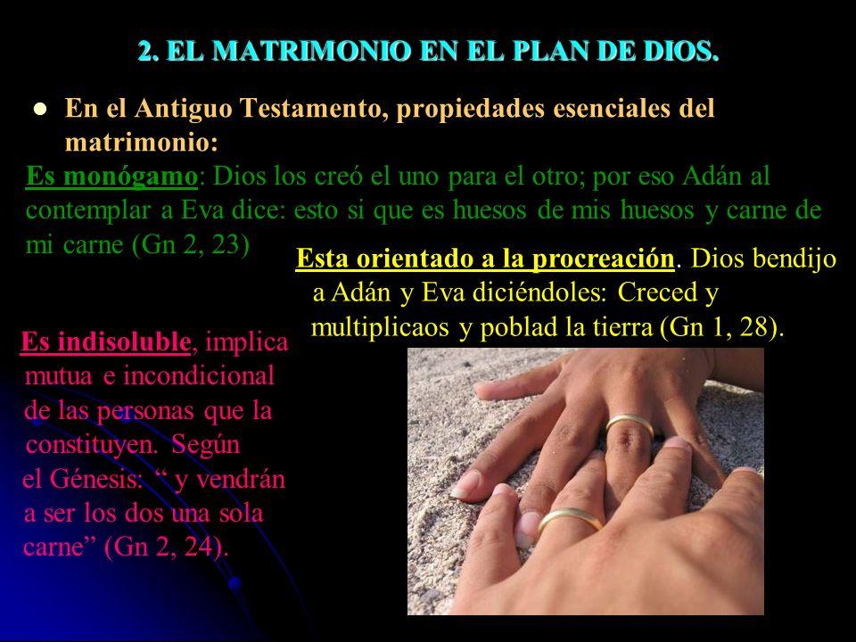2.EL MATRIMONIO EN EL PLAN DE DIOS.