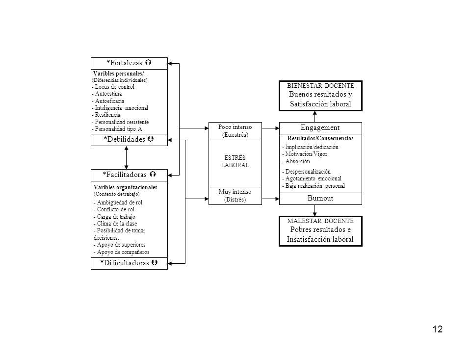 12 Varibles organizacionales (Contexto de trabajo) - Ambigüedad de rol - Conflicto de rol - Carga de trabajo - Clima de la clase - Posibilidad de tomar decisiones.