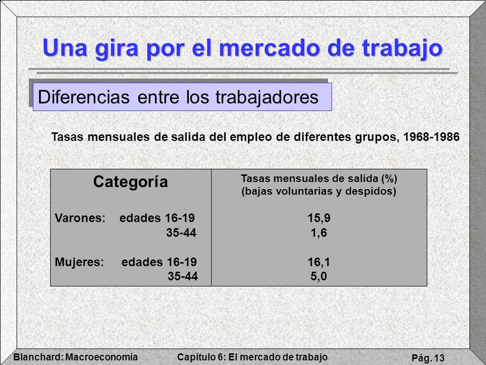 Capítulo 6: El mercado de trabajoBlanchard: Macroeconomía Pág. 13 Una gira por el mercado de trabajo Diferencias entre los trabajadores Tasas mensuale