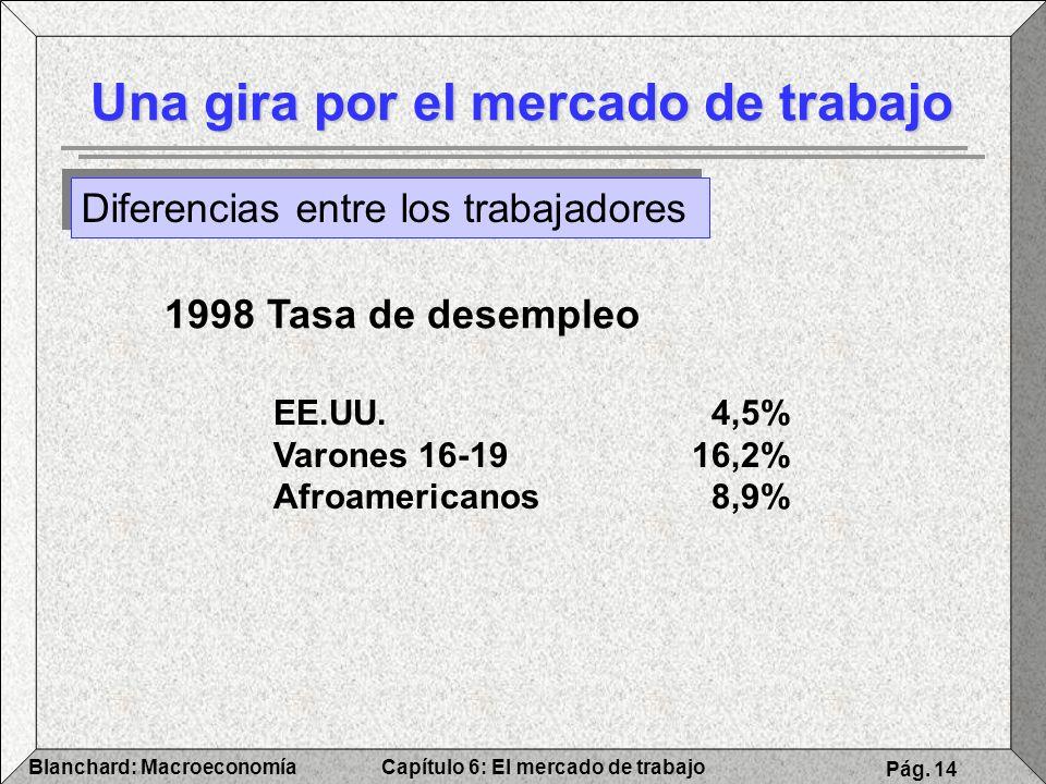 Capítulo 6: El mercado de trabajoBlanchard: Macroeconomía Pág. 14 Una gira por el mercado de trabajo Diferencias entre los trabajadores 1998 Tasa de d