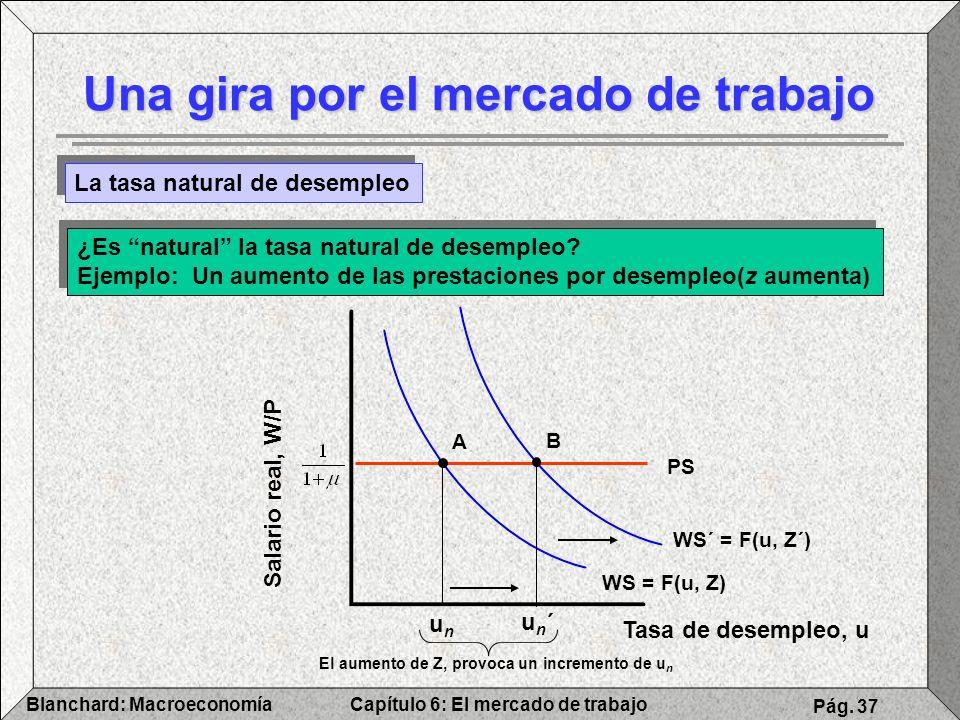Capítulo 6: El mercado de trabajoBlanchard: Macroeconomía Pág. 37 WS´ = F(u, Z´) Una gira por el mercado de trabajo La tasa natural de desempleo ¿Es n