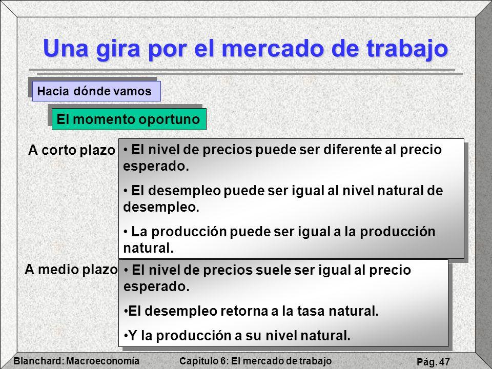 Capítulo 6: El mercado de trabajoBlanchard: Macroeconomía Pág. 47 Una gira por el mercado de trabajo Hacia dónde vamos A corto plazo El nivel de preci