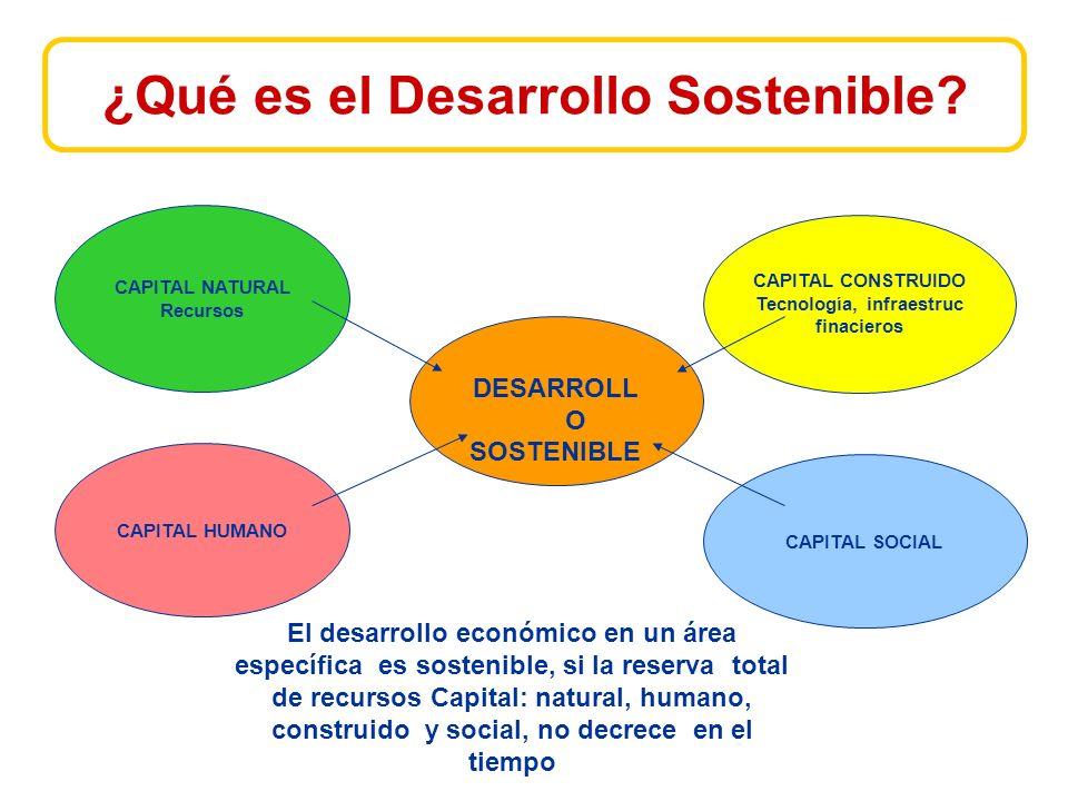 ¿Qué es el Desarrollo Sostenible.