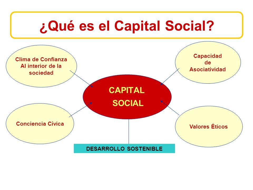 ¿Qué es el Capital Social.