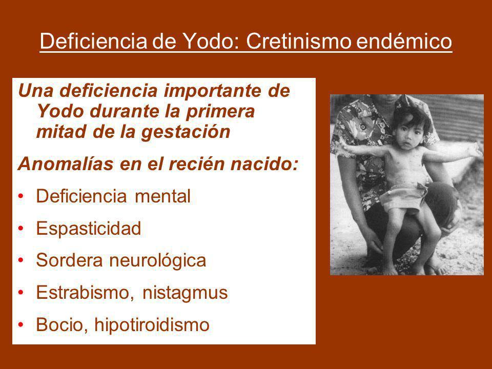 Importancia del Yodo en el Neurodesarrollo embrionario/fetal El hipotiroidismo materno es un factor de riesgo para el neurodesarrollo embrionario/feta
