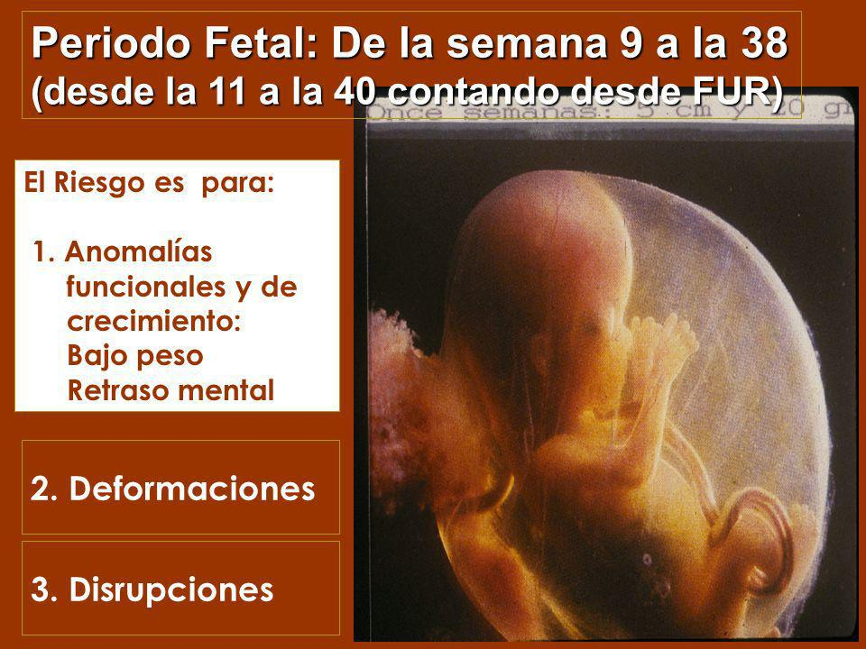 Toxicidad Fetal / Neonatal Toxicidad Fetal / Neonatal Se puede expresar de múltiples maneras: –Retraso del crecimiento intrauterino –Muerte fetal –Alt