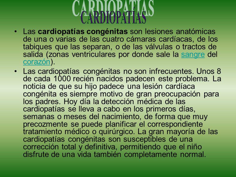 Las cardiopatías congénitas son lesiones anatómicas de una o varias de las cuatro cámaras cardíacas, de los tabiques que las separan, o de las válvula