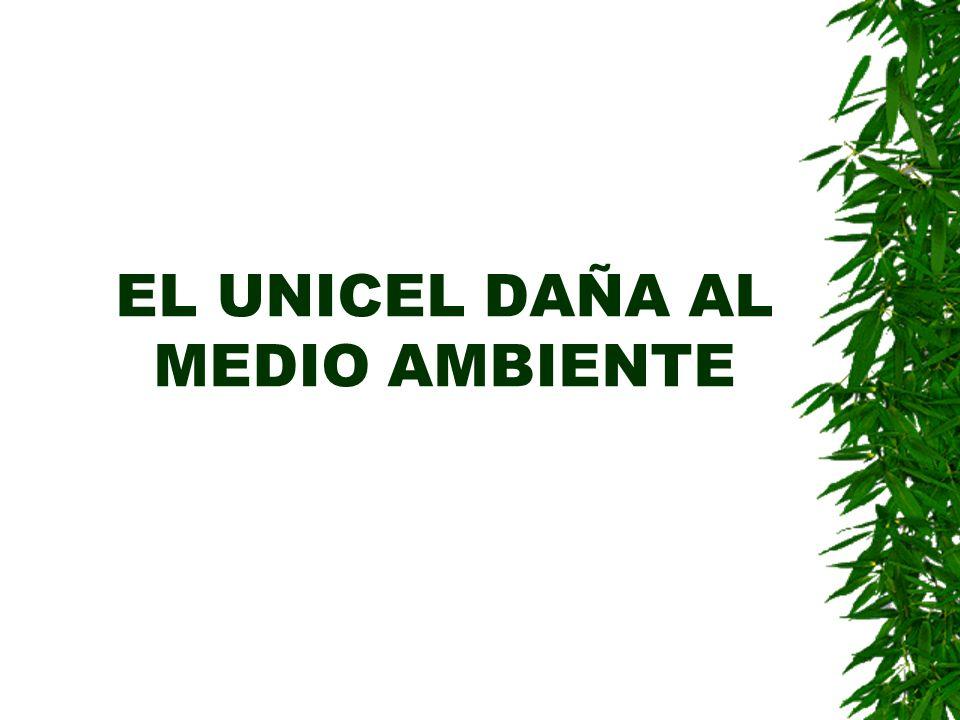 EL UNICEL DAÑA AL MEDIO AMBIENTE