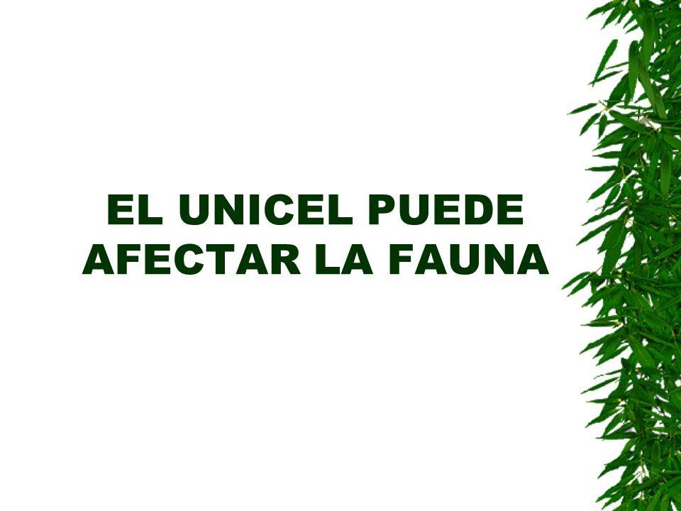 EL UNICEL PUEDE AFECTAR LA FAUNA