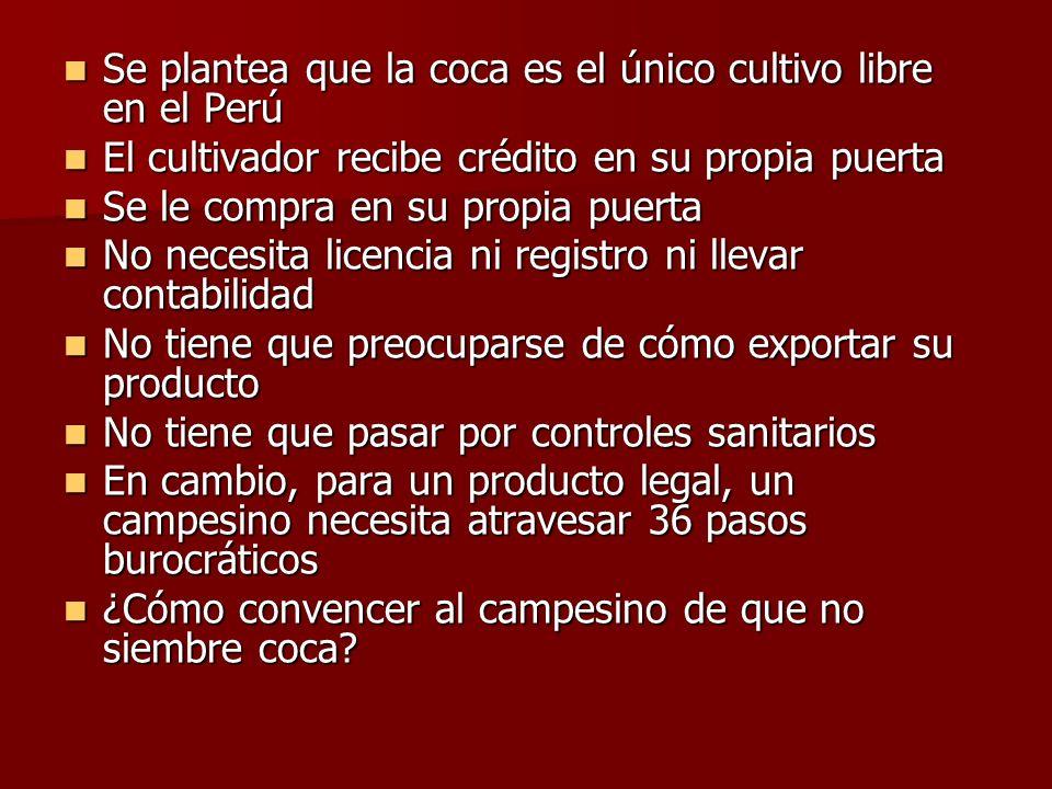 Se plantea que la coca es el único cultivo libre en el Perú Se plantea que la coca es el único cultivo libre en el Perú El cultivador recibe crédito e