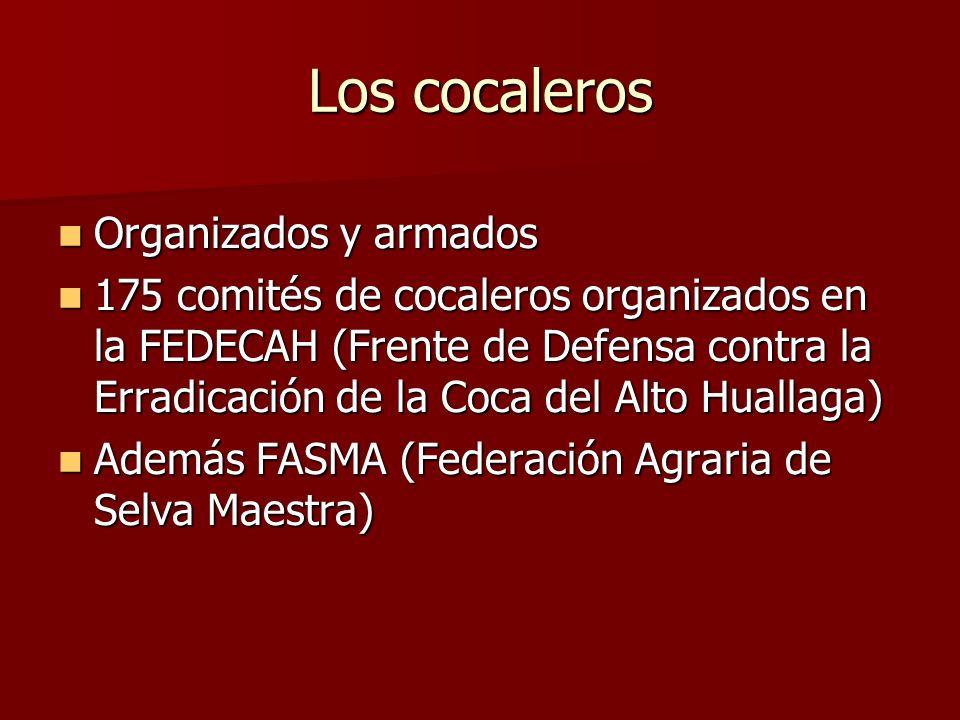 Los cocaleros Organizados y armados Organizados y armados 175 comités de cocaleros organizados en la FEDECAH (Frente de Defensa contra la Erradicación