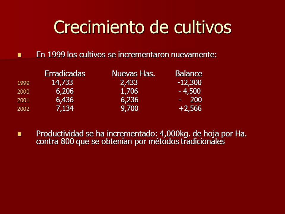 Crecimiento de cultivos En 1999 los cultivos se incrementaron nuevamente: En 1999 los cultivos se incrementaron nuevamente: Erradicadas Nuevas Has. Ba