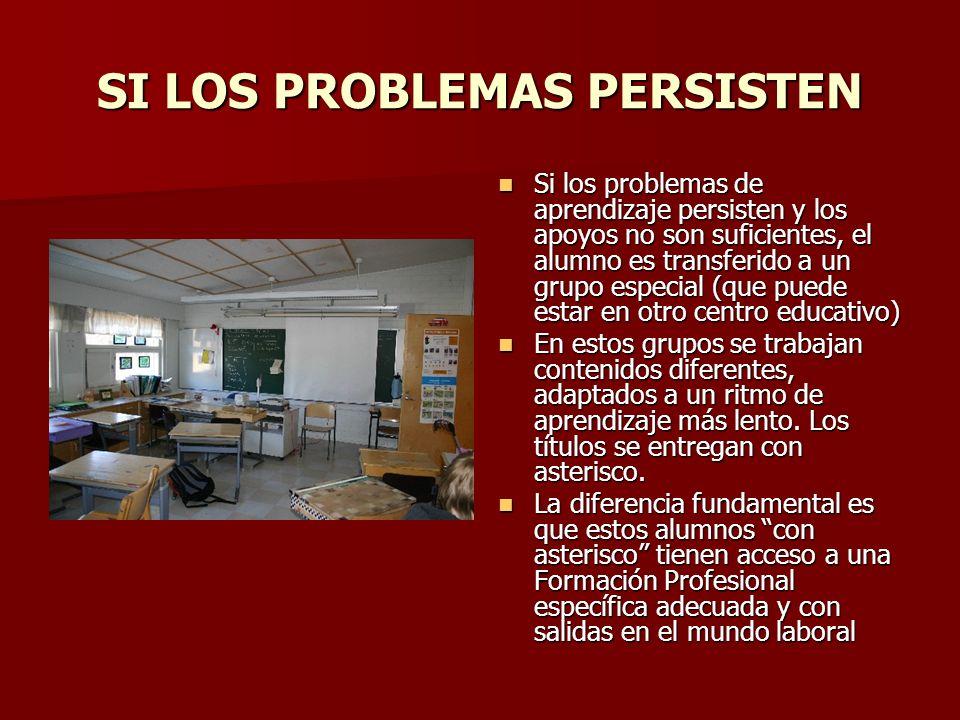 SI LOS PROBLEMAS PERSISTEN Si los problemas de aprendizaje persisten y los apoyos no son suficientes, el alumno es transferido a un grupo especial (qu