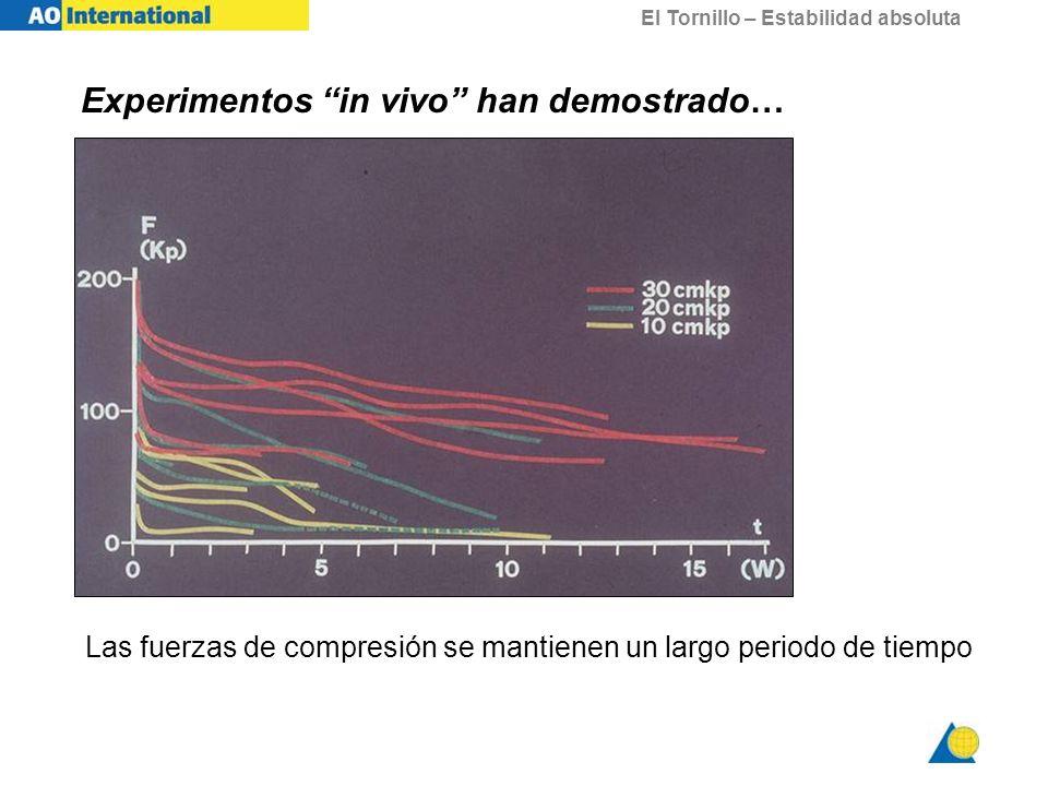 El Tornillo – Estabilidad absoluta Las fuerzas de compresión se mantienen un largo periodo de tiempo Experimentos in vivo han demostrado…