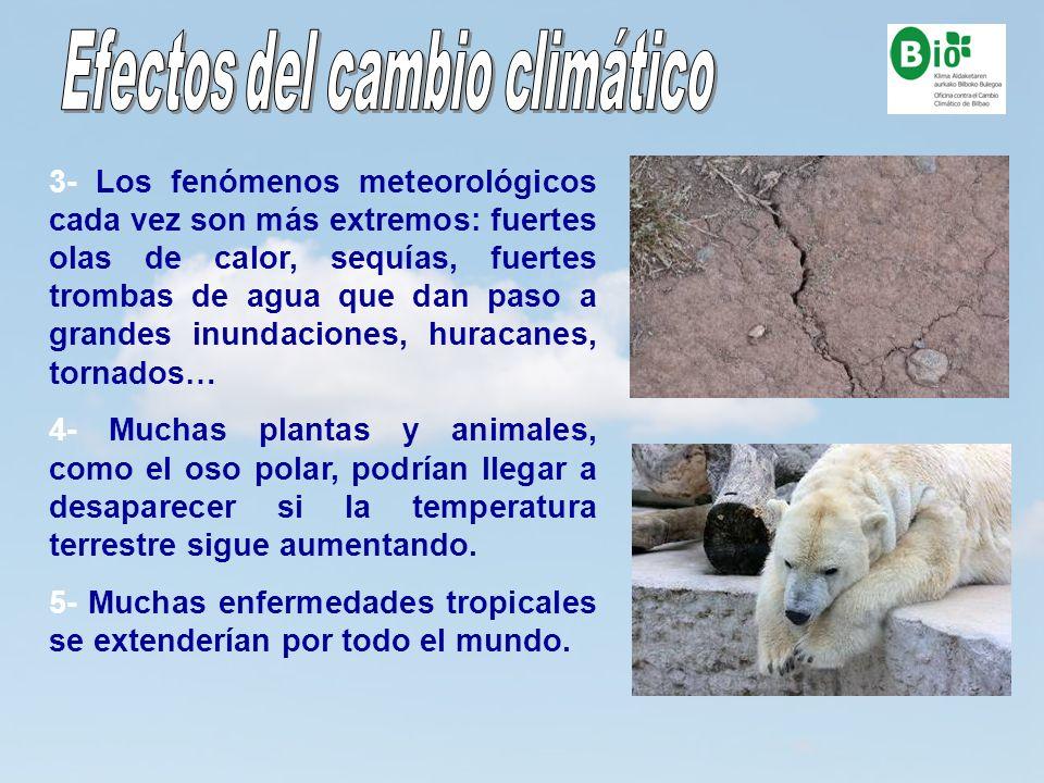 13 3- Los fenómenos meteorológicos cada vez son más extremos: fuertes olas de calor, sequías, fuertes trombas de agua que dan paso a grandes inundacio