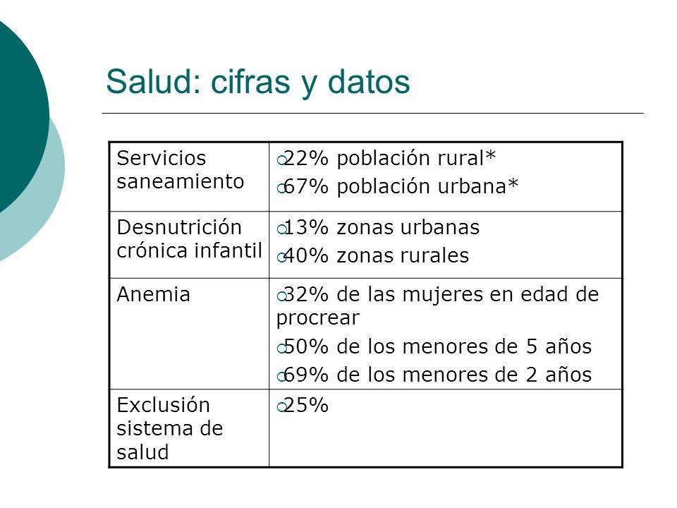 Servicios saneamiento 22% población rural* 67% población urbana* Desnutrición crónica infantil 13% zonas urbanas 40% zonas rurales Anemia 32% de las m