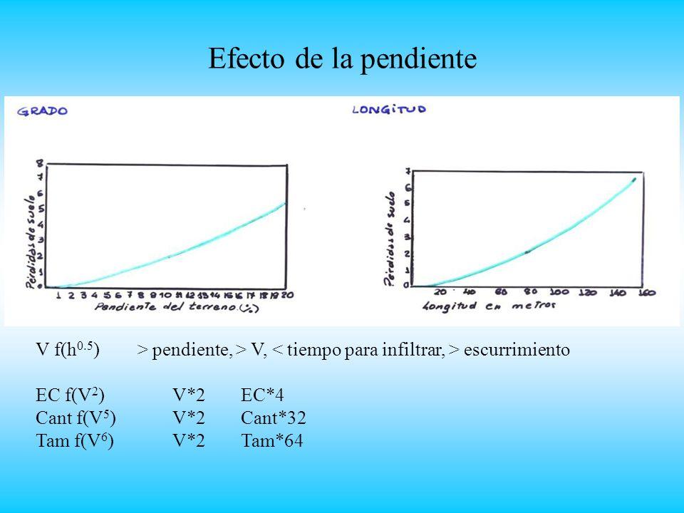 Efecto de la pendiente V f(h 0.5 ) > pendiente, > V, escurrimiento EC f(V 2 ) V*2 EC*4 Cant f(V 5 )V*2Cant*32 Tam f(V 6 )V*2Tam*64