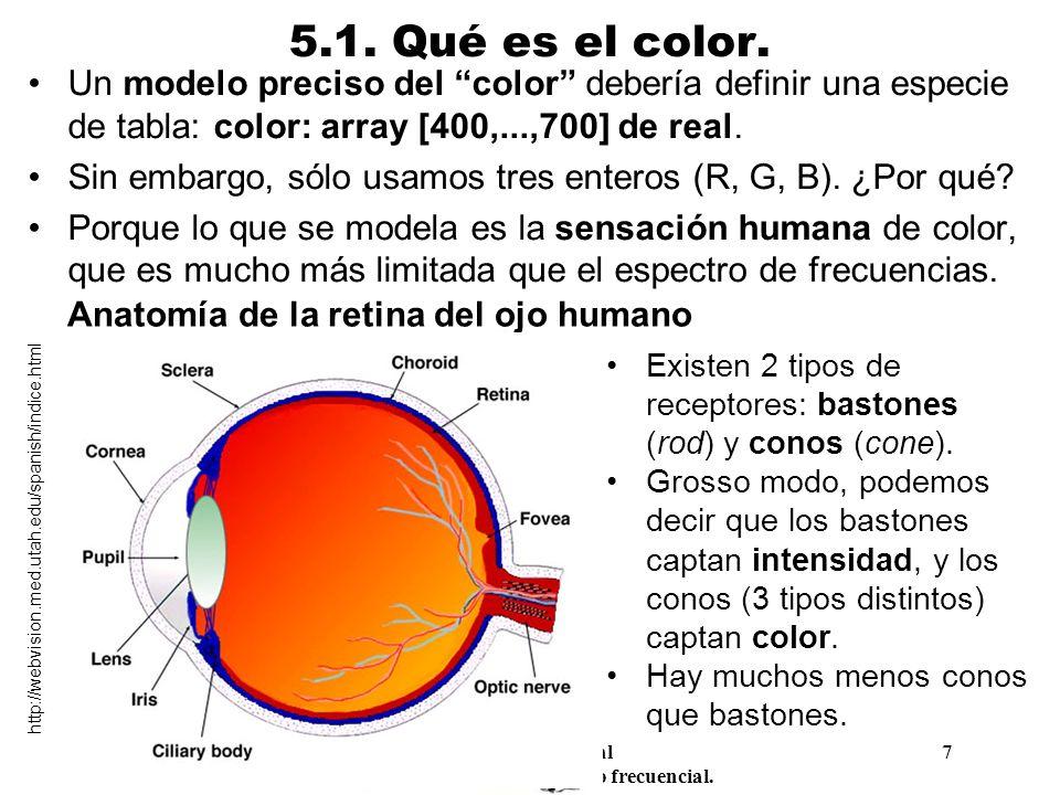 Procesamiento Audiovisual 7 Tema 5. Espacios de color y el dominio frecuencial. 5.1. Qué es el color. Un modelo preciso del color debería definir una