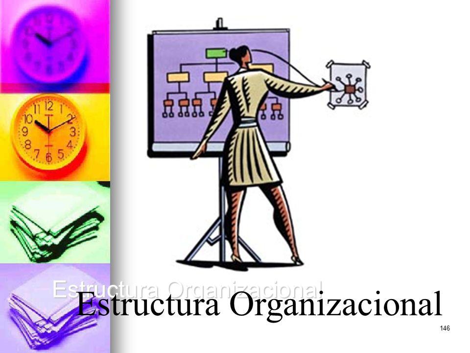 146 Estructura Organizacional