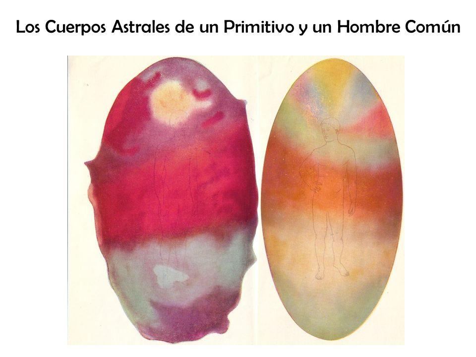 Los Cuerpos Astrales de un Primitivo y un Hombre Común