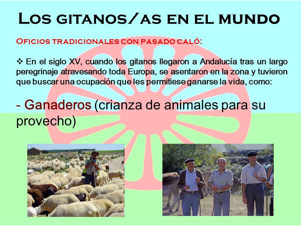 Los gitanos/as en el mundo Semana de Andalucía en el Cole OFICIOS, POBLACIÓN Y LENGUAJE Los gitanos/as en el mundo Oficios tradicionales con pasado ca