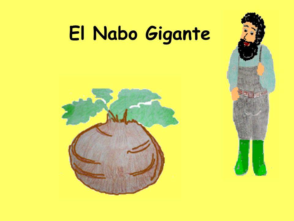 Aquí está Señor Jimenez. Planta una semilla. Quiere crecer un nabo.