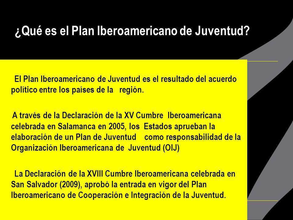 El Plan Iberoamericano de Juventud representa un aporte a la agenda pública de juventud, pues enriquece la visión de la Declaración del Milenio donde la juventud no aparece de manera tan explícita.