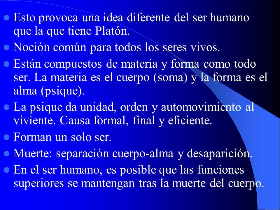 Esto provoca una idea diferente del ser humano que la que tiene Platón. Noción común para todos los seres vivos. Están compuestos de materia y forma c