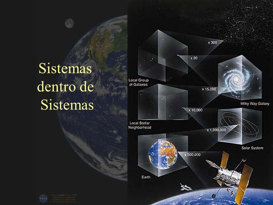 Sistemas dentro de Sistemas