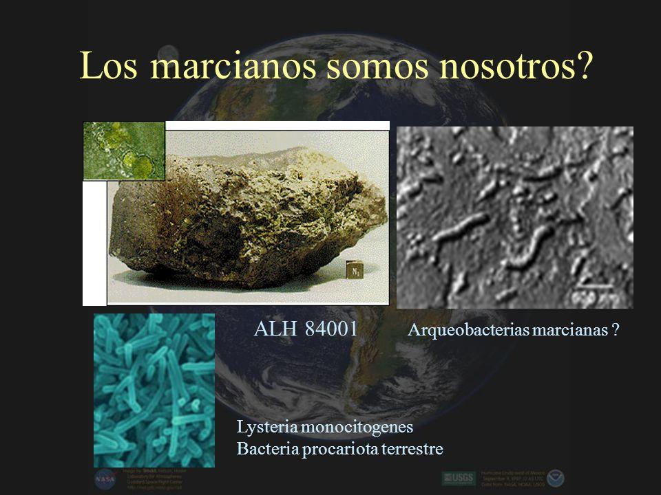 Extremófilos terrestres Río Tinto : lugar de pruebas de misiones de NASA Baterias con pH extracelular menor a 2 (Acido) e intracelular aproximadamente