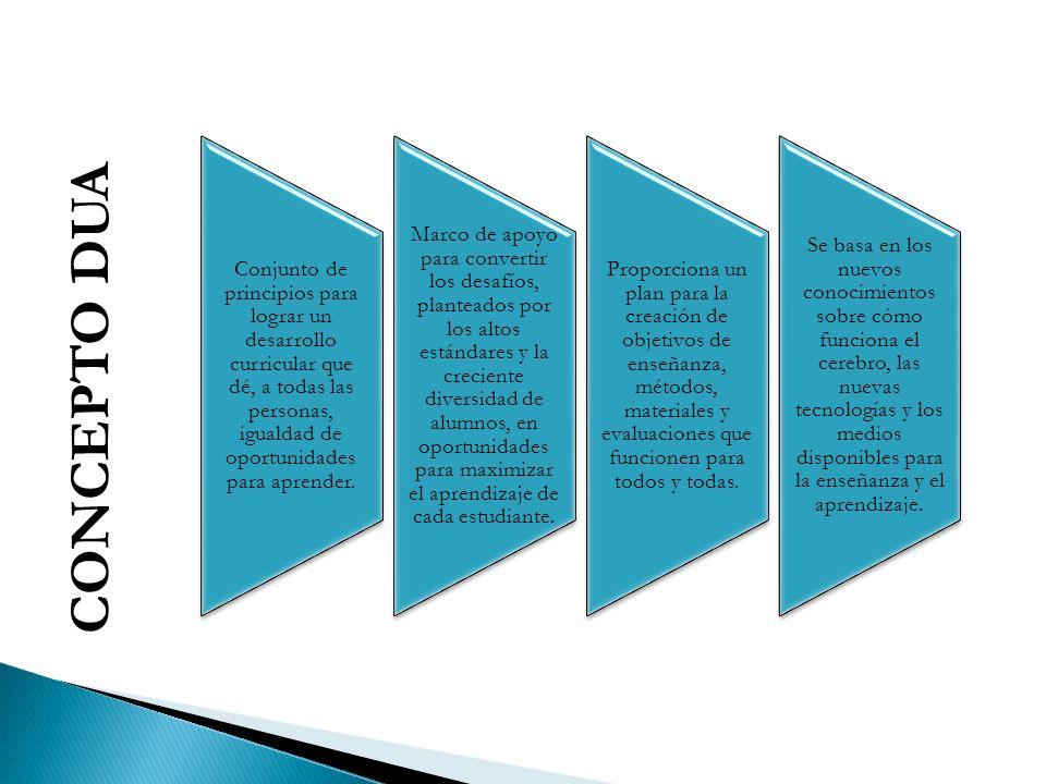 Conjunto de principios para lograr un desarrollo curricular que dé, a todas las personas, igualdad de oportunidades para aprender.