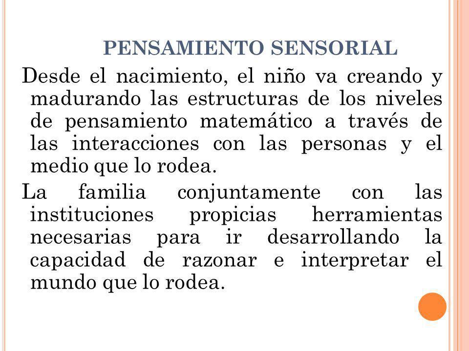 NIVELES DEL PENSAMIENTO MATEMATICO: SENSORIAL Y CONCRETO El sistema sensorial es parte del sistema nervioso, responsable de procesar la información sensorial.