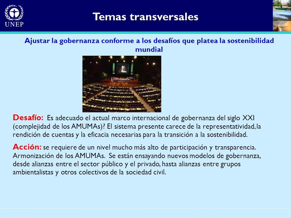 Temas transversales Ajustar la gobernanza conforme a los desafíos que platea la sostenibilidad mundial Desafío: Es adecuado el actual marco internacio