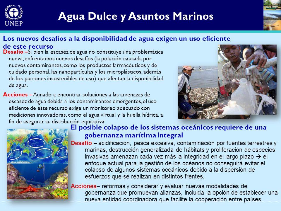 Agua Dulce y Asuntos Marinos El posible colapso de los sistemas oceánicos requiere de una gobernanza marítima integral Desafío – acidificación, pesca