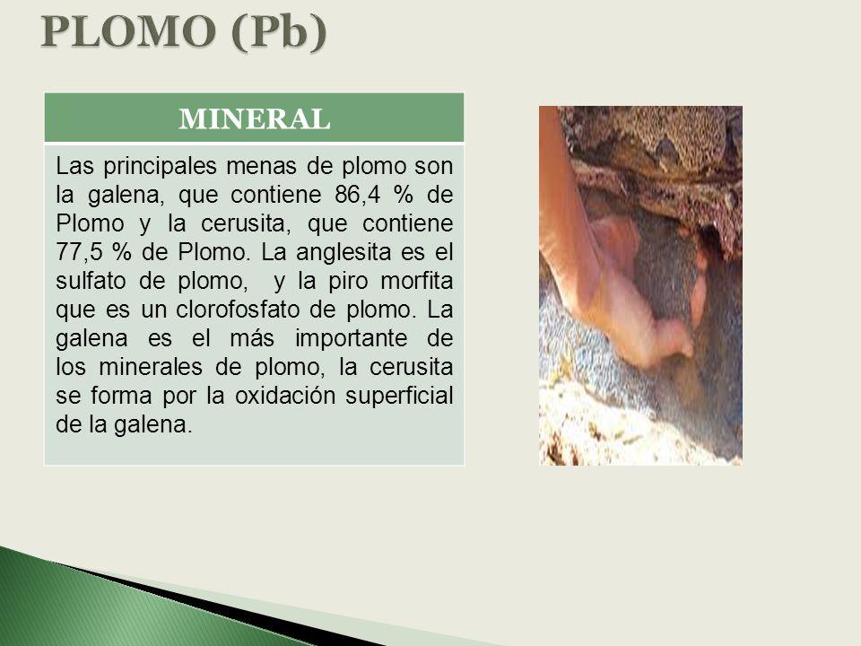 MINERAL Las principales menas de plomo son la galena, que contiene 86,4 % de Plomo y la cerusita, que contiene 77,5 % de Plomo. La anglesita es el sul